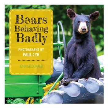 Bears Behaving Badly ebook by John McDonald