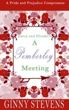 Darcy and Elizabeth: A Pemberley Meeting ebook by Ginny Stevens