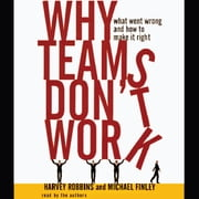 Why Teams Don't Work audiobook by Michael Finley, Harvey Robbins