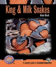 King & Milk Snakes (Complete Herp Care) ebook by Adam Black