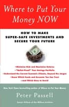 Where to Put Your Money NOW ebook by Peter Passell