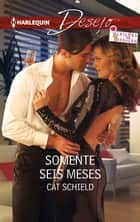 Somente seis meses ebook by Cat Schield