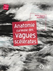 Anatomie curieuse des vagues scélérates ebook by Kobo.Web.Store.Products.Fields.ContributorFieldViewModel
