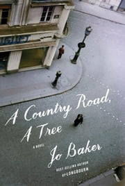 A Country Road, A Tree - A novel ebook by Jo Baker