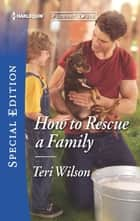 How to Rescue a Family ebook by Teri Wilson