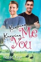 Knowing Me, Knowing You ebook by Renae Kaye