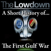 The Lowdown: A short history of the origins of The First Gulf War audiobook by Dr Robert Johnson