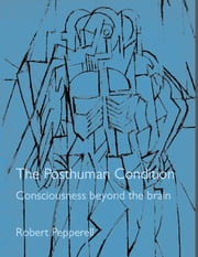 The Posthuman Condition - Consciousness Beyond The Brain ebook by Robert Pepperell