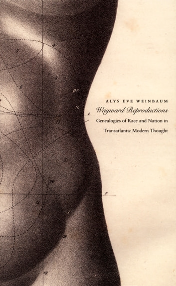 Wayward Reproductions - Genealogies of Race and Nation in Transatlantic Modern Thought ebook by Inderpal Grewal,Caren Kaplan,Robyn Wiegman,Alys Eve Weinbaum