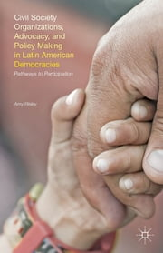 Civil Society Organizations, Advocacy, and Policy Making in Latin American Democracies - Pathways to Participation ebook by Amy Risley