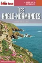 ÎLES ANGLO-NORMANDES 2016 Carnet Petit Futé ebook by Dominique Auzias, Jean-Paul Labourdette