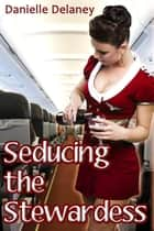 Seducing the Stewardess ebook by Danielle Delaney