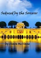 Seduced by the Sorcerer ebook by Clare McClane
