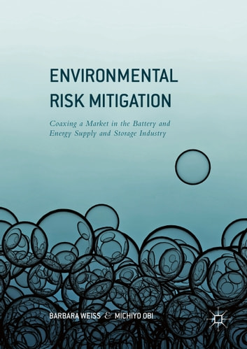 Environmental Risk Mitigation - Coaxing a Market in the Battery and Energy Supply and Storage Industry ebook by Barbara Weiss,Michiyo Obi