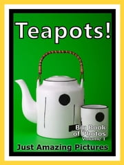 Just Tea Pot Photos! Big Book of Teapot Photographs & Teapots Pictures of Tea Pots, Vol. 1 ebook by Big Book of Photos