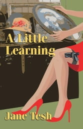 A Little Learning - A Madeleine Maclin Mystery ebook by Jane Tesh