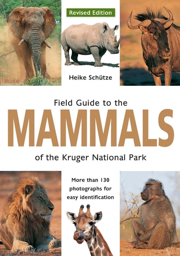 Field Guide to Mammals of the Kruger National Park ebook by Heike Schütze