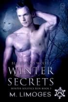Winter Secrets ebook by M. Limoges