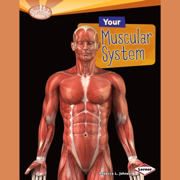 Your Muscular System audiobook by Rebecca L. Johnson