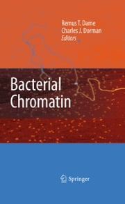 Bacterial Chromatin ebook by Remus T. Dame,Charles J. Dorman
