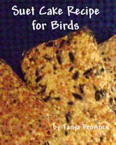 Suet Cake Recipe For Birds ebook by Tanya Provines