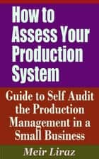 How to Assess Your Production System: Guide to Self Audit the Production Management in a Small Business - Small Business Management ebook by Meir Liraz