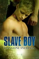 Slave Boy ebook by Evangeline Anderson