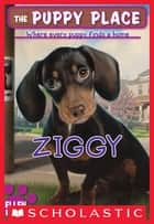The Puppy Place #21: Ziggy ebook by Ellen Miles