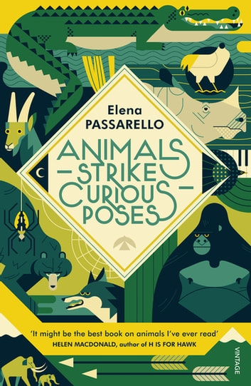 Animals Strike Curious Poses ebook by Elena Passarello