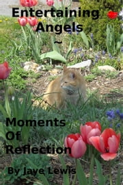 Entertaining Angels ~ Moments of Reflection ebook by Jaye Lewis