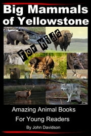 Big Mammals Of Yellowstone For Kids: Amazing Animal Books for Young Readers ebook by John Davidson