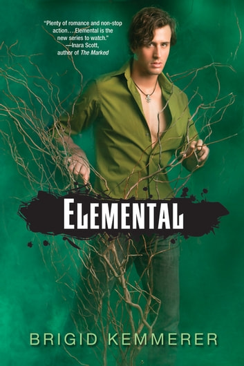 Elemental ebook by Brigid Kemmerer