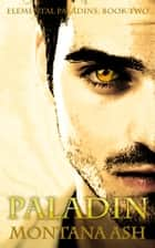Paladin (Book Two of the Elemental Paladins series) ebook by Montana Ash