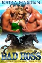 Bad Hoss - BBW Paranormal Shape Shifter Romance: Windemere Stallions, #1 ebook by Erika Masten