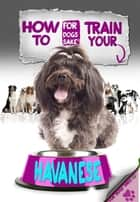 How to Train Your Havanese ebook by Jenny Milbrook