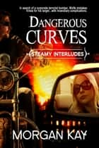 Dangerous Curves: A Romantic Comedy ebook by Morgan Kay