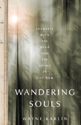 Wandering Souls - Journeys With the Dead and the Living in Viet Nam ebook by Wayne Karlin