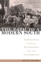 The Path to a Modern South ebook by Walter L. Buenger