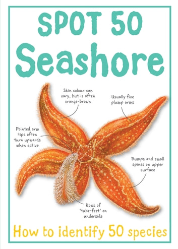 Spot 50 Seashore ebook by Miles Kelly