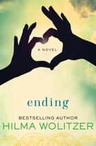 Ending - A Novel ebook by