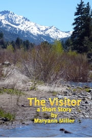 The Visitor ebook by Maryann Miller