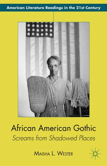 american gothic fiction Gothic, novel, and romance: brief definitions: novel richard chase, the american novel and its tradition (1957 gothic purposes.