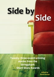 Side by Side ebook by David Vernon