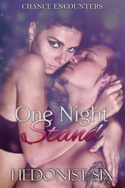 One Night Stand - A Steamy Geek / Biker Romance ebook by Hedonist Six