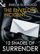 The Envelope Incident (Mills & Boon Spice Briefs) ebook by Emelia Elmwood