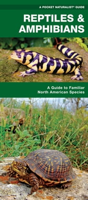 Reptiles & Amphibians - A Folding Pocket Guide to Familiar North American Species ebook by James Kavanagh,Raymond Leung