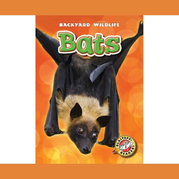 Bats audiobook by Kari Schuetz