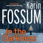 In the Darkness - An Inspector Sejer Novel livre audio by Karin Fossum