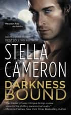Darkness Bound ebook by Stella Cameron