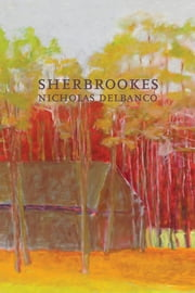 Sherbrookes - Possession / Sherbrookes / Stillness ebook by Nicholas Delbanco